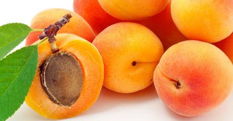 declinaison-abricots
